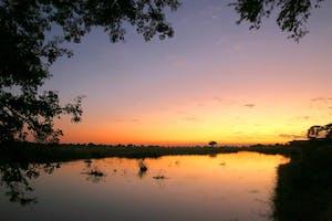 Breathtaking Linyanti Sunsets