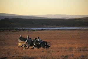 Wilderness drive from Bushmans Kloof