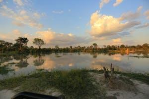Okavango Delta Scenery