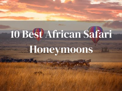 10 Best Safari Honeymoons