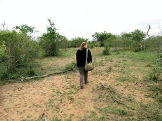 Bush Walking In Swaziland