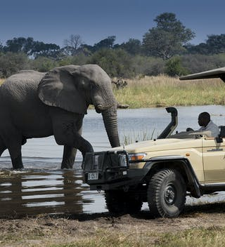 20 Khwai Tented Camp Game Drive