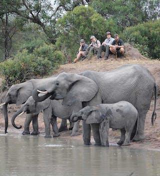 3 Africa On Foot Walking Safaris111