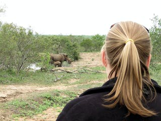 Finally Spotting The Rhinos Whilst Out On Foot