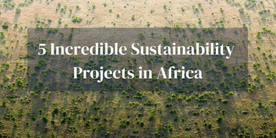 5 Incredible Sustainability Projects Africa