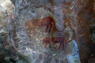 San Bushman Rock Painting