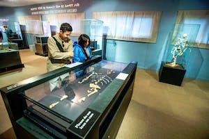 Addis Museum  Eto Paleontology