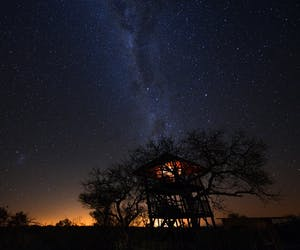 Africa On Foot Treehouse