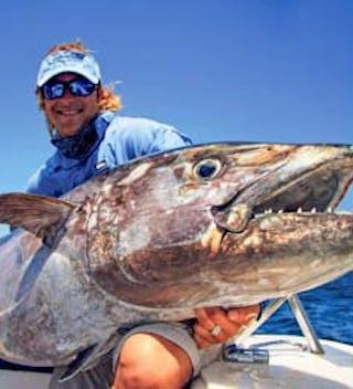 Alphonse Dogtooth Tuna