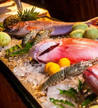 Alphonse Fish Meal