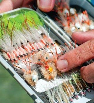 Alphonse Fly Fishing Equipment
