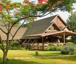 Arumeru  River  Lodge In  Tanzania