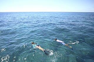 Azura  Benguerra Snorkeling