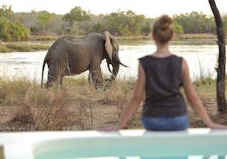 Azura Selous Elephant In Front Of A Villa