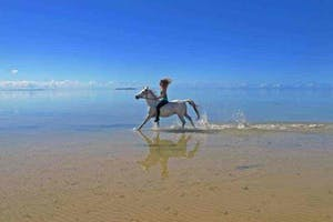 Beach Horse Riding At  Vilanculos  Villa  Santorini