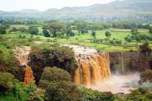 Blue  Nile  Falls Good