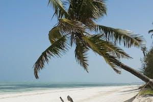 Breezes  Beach  Club And  Spa  Bwejuu  Beach