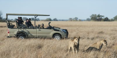 Busanga  Bush  Camp Safari Lions