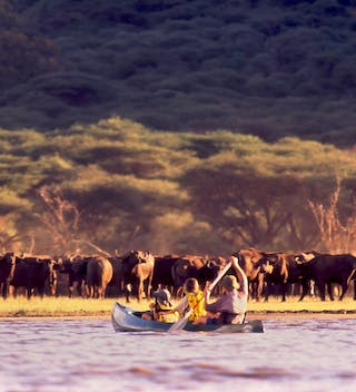 Canoeing Arusha Np With Buffaloes