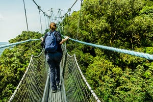 Canopy Walkway In Nyungwe National Park
