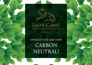 Carbon Neutral Leaves