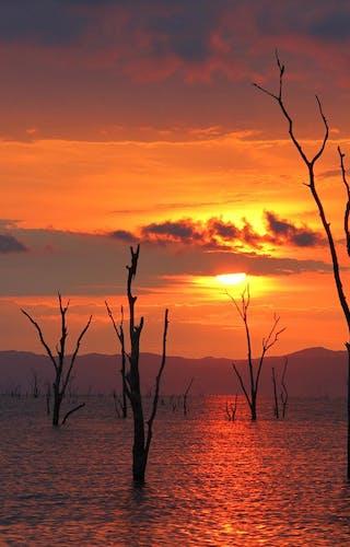 Changa Sunset