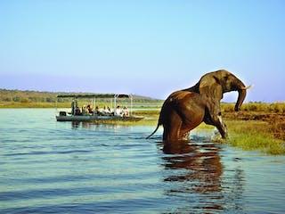 Chobe Safari Lodge, Botswana - River Safari