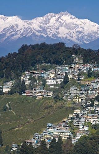 Darjeeling Mountain Views