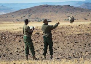 Desert Rhino Blog 2