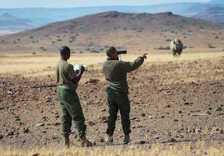 Desert Rhino Camp 5