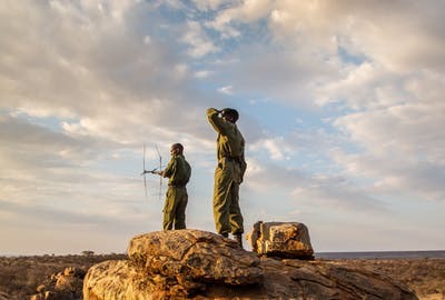 Discovering Conservation Kenya Safari
