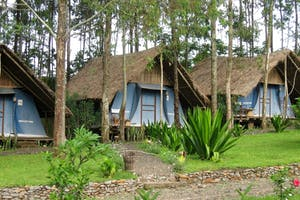 Eco  Omo  Safari  Lodge Chalets
