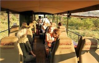 Elephant Express Imvelo