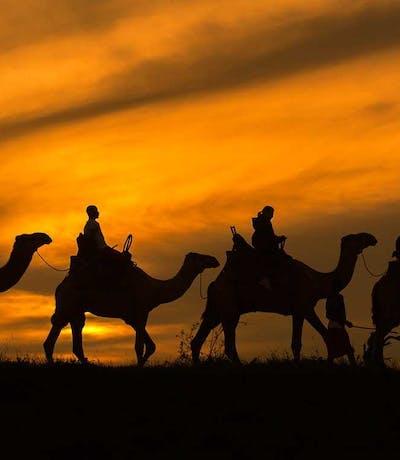 Elewana Lodo Springs Loisaba Camel Trekking