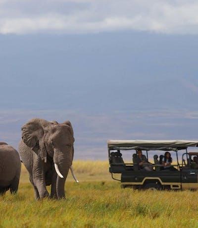 Elewana Tortilis Camp Amboseli 1