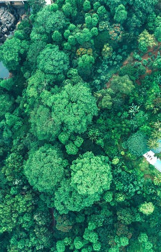 Ellerton Aerial View