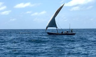 Fanjobve Island Dhow