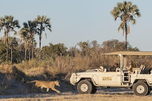 Game Drive From Xigera