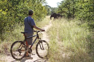 Game Viewing On Bikes  Jozibanini