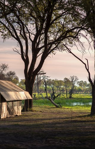 Golden Africa Safaris Guest Tents By Lagoon