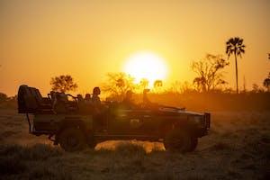 Gomoti Plains Sunset Game Drive