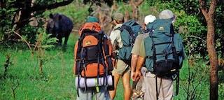 Hluhluwe Trails Hluhluwe Umfolozi Game Reserve South Africa Walking Wildlife Rhino