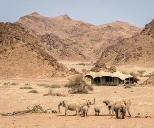 Hoanib Skeleton Coast Camp Overview