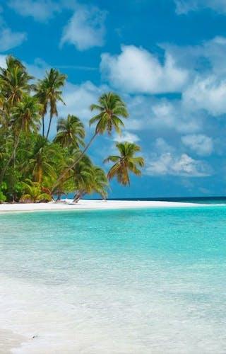 Honeymoon Zanzibar 1