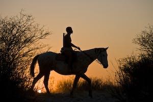 Horse Riding Grasslands Bushman Lodge