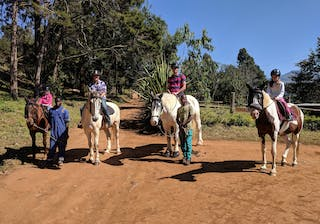 Horse Riding In Malawi