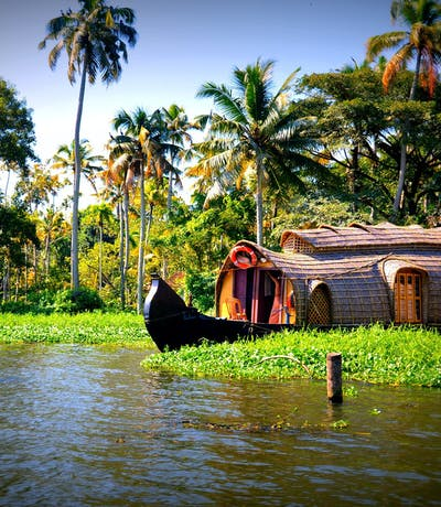 Houseboat Through The Reeds In Kerala