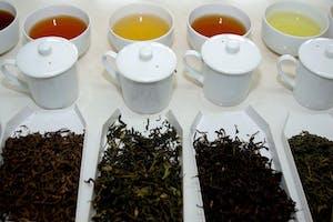Huntingdon House Satemwa Tea Tasting