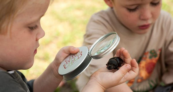 Inspecting Bugs With The Wildchild Magnifying Glass With Beyond