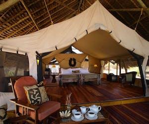Jongomero Luxury Tent